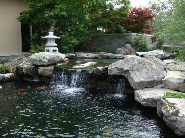 Brooks pool company koi pond for Pool with koi pond